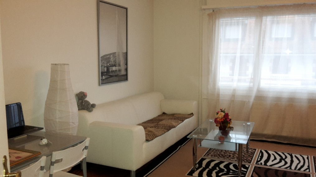 flatsforexpats ad furbished apartment geneva